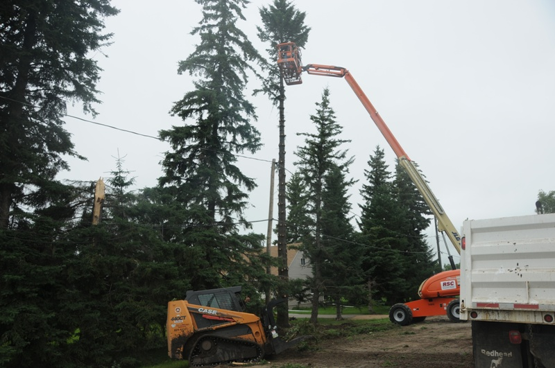 Excavation Lloydminster - Trees 22