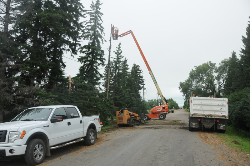 Snow Removal Lloydminster - Trees 23