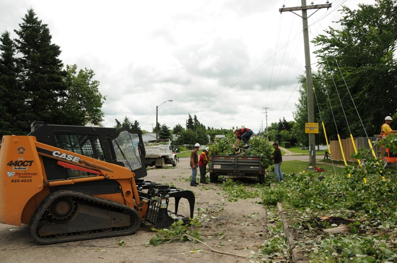 Snow Removal Lloydminster - Trees 8